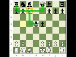 Chess Tactics: Double Attack - YouTube